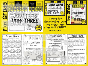 Journeys FIRST Grade  Grammar Mini Books: The BUNDLE