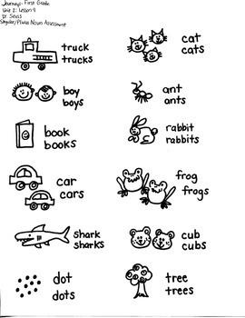 Journeys First Grade: Dr. Seuss Unit 2/Lesson 9 - singular/plural nouns