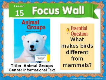 Journeys First Grade Lesson 15 Focus Wall (Editable)