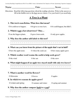 Teacher-Created 1st Grade Reading Test from Journeys, Lesson 24