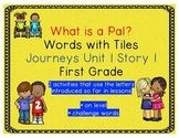 Journeys First Grade Reading Unit 1 Lesson 1 What is a Pal
