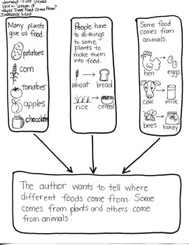 Journeys First Grade: Where Does Food: Unit 4/Lesson 18 INFERENCE/AUTHOR'S PURP.