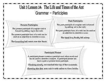 Journeys Fourth Grade Unit 3 Lesson 14 - The Life and Times of the Ant
