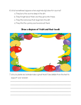"Journeys ""From Seed to Plant"" Leveled Reader Story Questions"