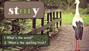 Journeys Grade 3 Interactive Spelling List 14