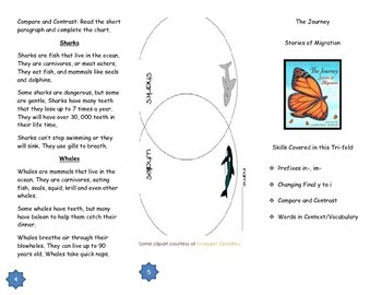 "Journeys Grade 3; Lesson 22: ""The Journey"" Trifold"