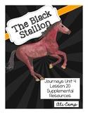 Journeys Grade 5 Lesson 20:The Black Stallion Reading Supp