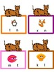 Tigers (Growing Up) Literacy Unit and Literacy Centers