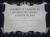 Journeys Lesson 20 Dex the heart of a Hero Guided Reading