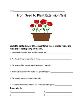 Journeys Lesson 25  From Seed to Plant Extension Spelling Word Activities