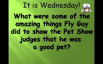 "Journey's 1st Grade Lesson 29 ""Hi Fly Guy"" PowerPoint"