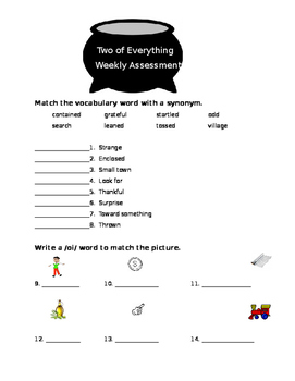 Journeys Lesson 29 Two of Everything Test