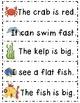 Journeys® Literacy Activities - At Home in the Ocean- Grade 1