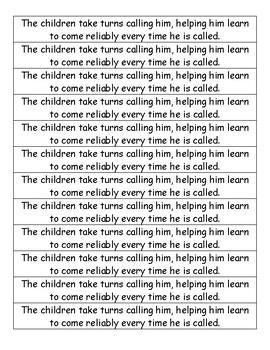 Journeys Mentor Sentence for Lesson 17