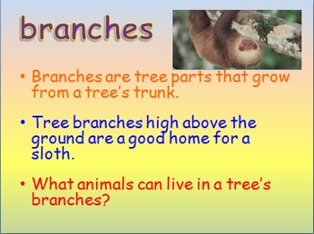 """Journeys 2nd Lesson 06 Vocab Intro PPT for """"Animals Building Homes"""""""