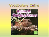 """Journeys 2nd Lesson 06 Vocab Intro PPT for """"Animals Buildi"""