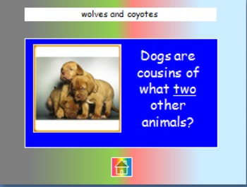 "Journeys 2nd Lesson 03 Jeopardy Review PPT for ""Dogs"""