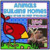 Animals Building Homes Second Grade NO PREP Supplemental Printables