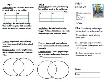 Journeys, Second  Grade, Lesson 20, Unit 4, Literacy assignment