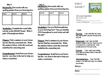 Journeys, Second Grade, Unit 2, Lesson 7, Literacy Assignment