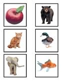 Journeys Sound Spelling Memory - ABC Edition