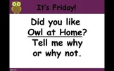 Journey's 1st Grade Trade Book Unit 6 Owl at Home