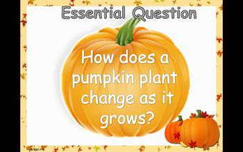 "Journey's 1st Grade Unit 2 Trade Book ""From Seed to Pumpkin"" PowerPoint"