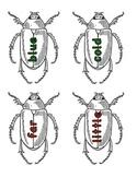 Journeys Unit 3 Sight Word Bugs (1st Grade)