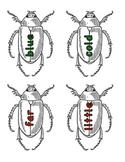 Journeys Unit 3 Sight Word Bugs (1st Grade)