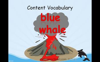 Journey's 1st Grade Unit 4 Amazing Whales! Trade Book