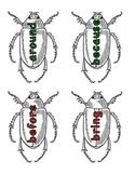 Journeys Unit 4 Sight Word Bugs (1st grade)