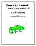 CHAMELEON, CHAMELEON, Is it a Question?