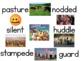 Journeys Vocab for Kindergarten Unit 3 (Lesson 12)