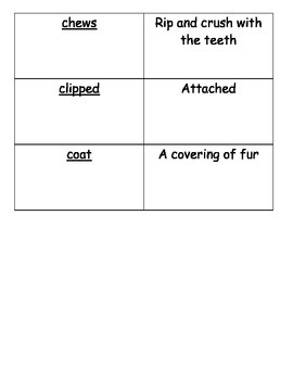 Journeys Vocabulary Cards Lesson 3