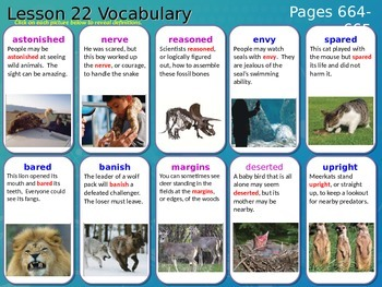 Journeys, Grade 5, Vocabulary in Context, Unit 5