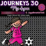Journeys Winners Never Quit 30 A Supplemental Unit