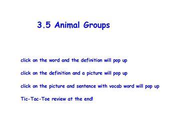 Journeys first grade vocabulary words 3.5
