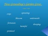 Journey's - Lesson 25 - How Groundhog's Garden Grew - Voc. Powerpoint