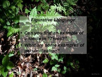 """Joyce Kilmer """"Tree"""" Poem PPT Presentation,  Literacy"""