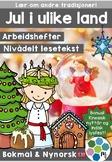 Jul og høytid i ulike land - nivådelte minibøker [BM&NN]