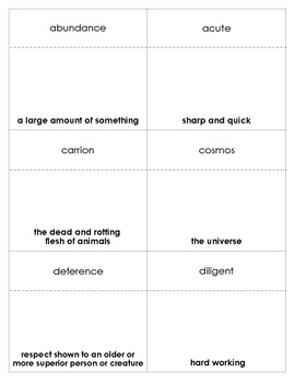 Julie of the Wolves Vocabulary Bingo