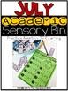 July Academic Sensory Bin