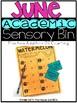 June Academic Sensory Bin