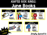 June/ End of Year Adapted Book Bundle