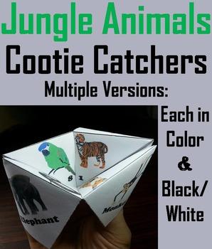 Jungle Animals Activity: Tiger, Jaguar, Wolf, Fox, Snake,