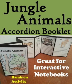 Jungle Animals Activity