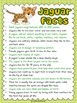 Jungle Animal Reports- Informational Non-Fiction Report Writing