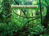 Jungle Animals Guessing Powerpoint