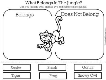 Jungle Worksheet   Jungle Activity   Jungle Printable