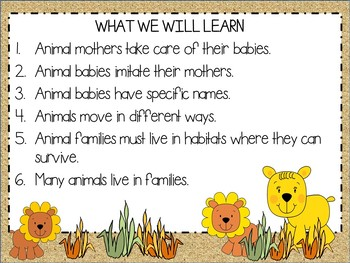 Jungle Animals Love Their Babies: Informational & Narrative Unit